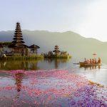 Pourquoi aller à Bali ?