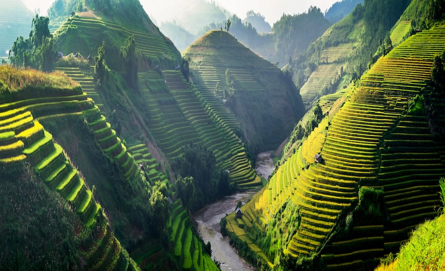Voyage Bali que faire que voir ?